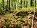 Ruines du château des fées à Ruaux
