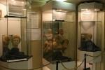 Espace archéologique d'Audun-le-Tiche (57) dans La Lorraine des musées Musee-Audun-le-Tiche-150x100